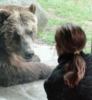 Marketing is a bear, but I am the Bear Whisperer!
